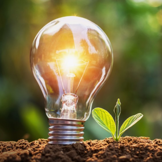 Leisure Energy electricity consumption