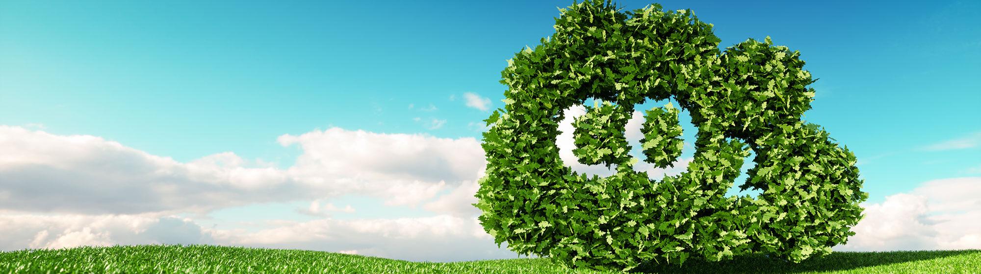 Leisure Energy saving carbon