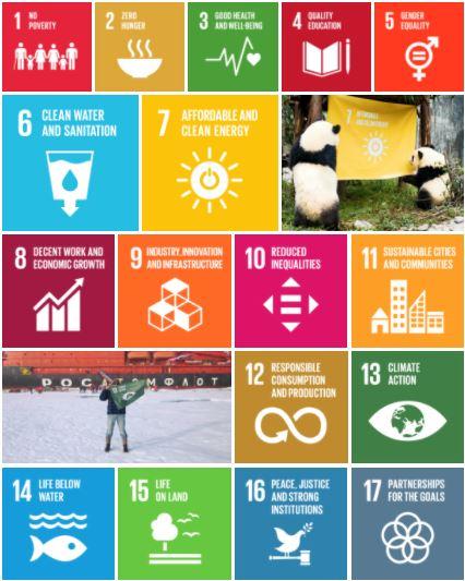 World Goals